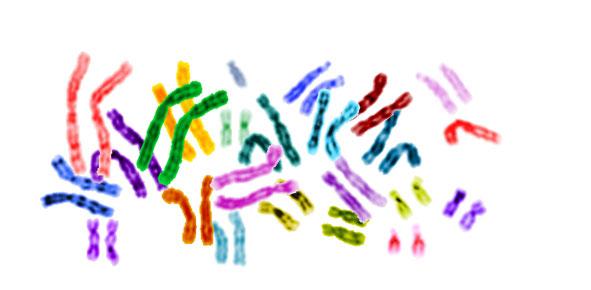 genetic_testing_591
